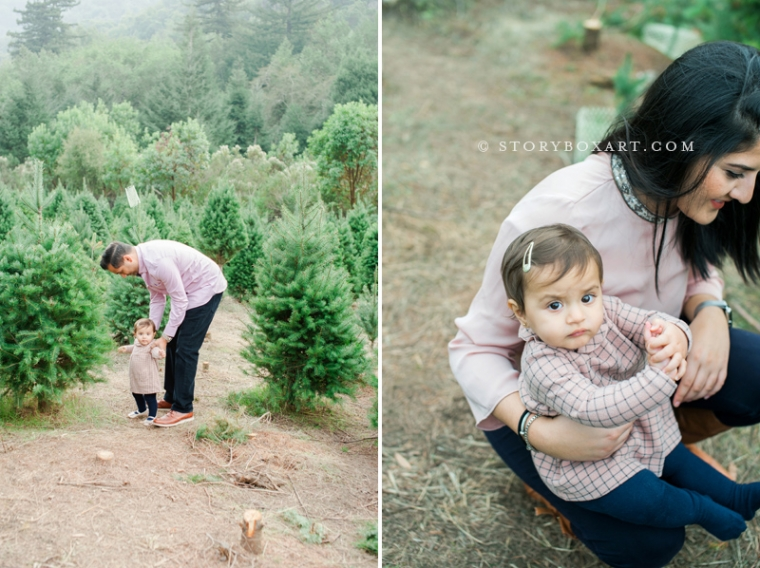 east bay family photographer